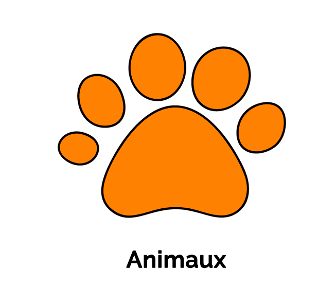 Hover Image assurance en espagne - mascotas fr - Accueil
